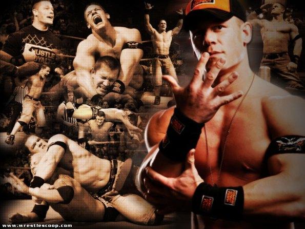 WWE_ 132