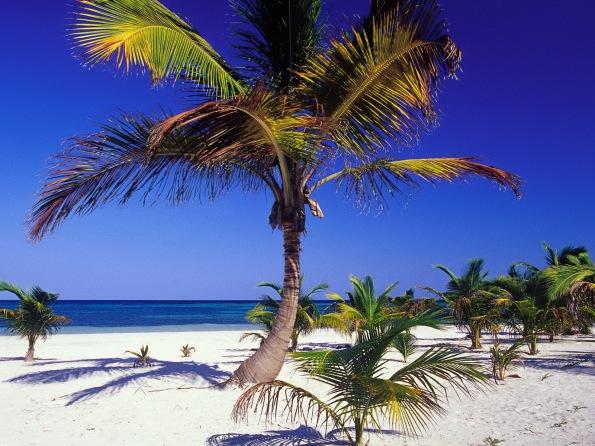 Playa Akumal, Yucatan