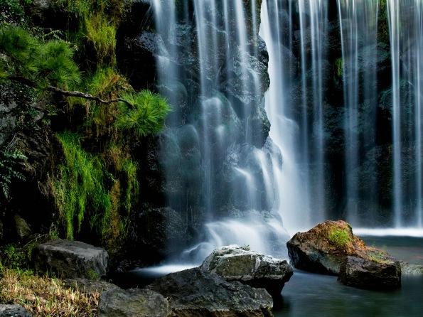 ?? (Waterfall in Tokyo Garden, Japan)